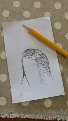 Snake's head drawing