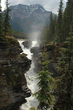http://www.olgalazin.com  The Ultimate Travel Photo Wall - TripAdvisor. Contact me: olgalazin@gmail.com