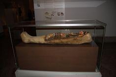 Momia egipcia.