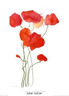 poppies by oskar koller