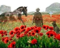 .In Remembrance of all our Veterans...  They shall grow not old as we that are left grow old, Age shall not weary them nor the years condemn, At the going down of the sun and in the morning,  WE WILL REMEMBER THEM.