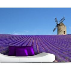 Samolepilna fototapeta The Scent Of Lavender In The Provence