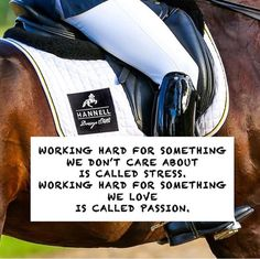 Nothing else to add! We, the equestrians know perfectly what this means...