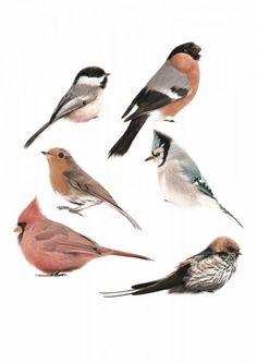 KEK Amsterdam Birds Set Muursticker - Set van 6 vogelstickers voor kamer GJ