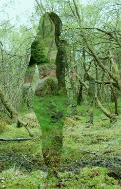 'Invisible' statues in Scottish forests made from acrylic plexiglass, byRob Mulholland - Imgur