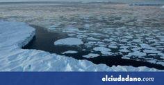#Nueva especie de bacteria es descubierta en la Antártica - elciudadano.com: elciudadano.com Nueva especie de bacteria es descubierta en la…