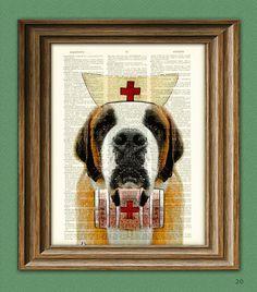Nurse Slobber Saint Bernard Dog