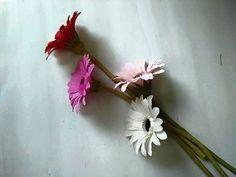 DIY How to make paper Gerbera Lam hoa dong tien bang giay nhun - YouTube