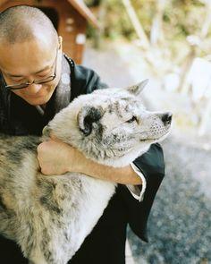 Monk and his Akita (via Yuki Ishikawa Photography)
