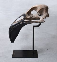 Quentin Garel - Skull of pink flamingo - 2013 - Bronze - 68 x 54 x 18 cm - © Mazel Galerie