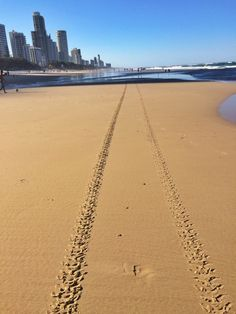 || Surfers Paradise beach - Gold Coast, Australia || I am selling this photo on Twenty20. You can buy it here.