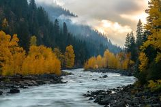 Fall's Last Hurrah - Great Morning Colors at Tumwater Canyon outside Leavenworth [OC][1920x1281]