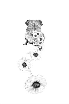 Set of 10 post cards with guinea pig, eating a chain of flowers. Printed on recycled paper.