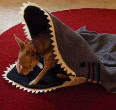 Dog Bed Blanket Simon The Shark PetCosy Silly Pet by rikarika
