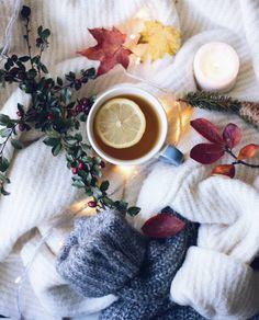 Autumn Trees, Winter Wonderland, Latte, Beverages, Thanksgiving, Tea, Coffee, Food, Rain