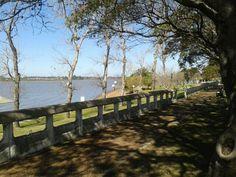 Hermosa vista de la Costanera de #Federación.  Un lindo paseo para realizar todo el año.