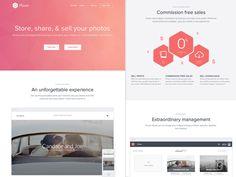 Plover Homepage by Matt Bango