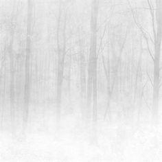 Crea un ambiente relajante en tu casa con el bello papel pintado digital Vinterskog (bosque de invierno) de la firma sueca Sandberg Wallpaper. Este papel pintado tiene un diseño inspirado en la luz nórdica y la simplicidad del paisaje escandinavo en invierno donde la naturaleza está en su punto más tranquilo. Tiene un diseño minimalista que crea una expresión limpia y de calma, perfecto en el dormitorio o en el salón.