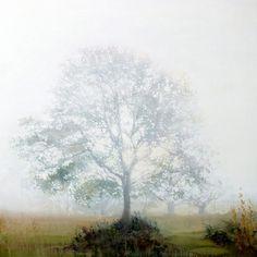 "Saatchi Online Artist Lara Cobden; Painting, ""Afterglow"" #art"