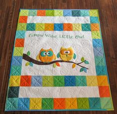 """Grow wise little owl!"" Sue recently finished this sweet baby quilt featuring bright, fun colors and superb quilting (notice the feathers!)"
