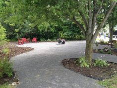 Saw this sitting area of Stone dust base with mulch and gardens around existing trees.  Really practical and low maintenance.