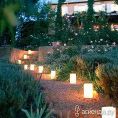 Сад Солнца и Луны: Группа Ландшафтный дизайн