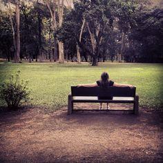 Parque da Cidade / Sjc