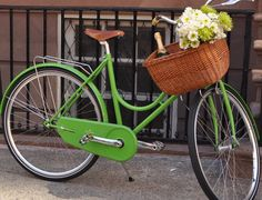 St patty's day bike