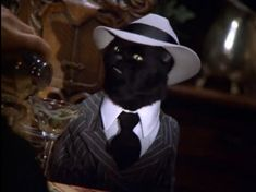 Salem Saberhagen makes me want a cat 17 Times Salem From 'Sabrina The Teenage Witch' Understood You Salem Sabrina, Sabrina Cat, Salem Cat, Salem Saberhagen, Sabrina Spellman, Witch Cat, All About Cats, Animal Totems, Cute Funny Animals