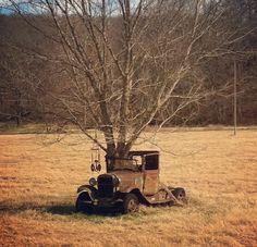 A tree grows through an abandoned car in rural Benton County, Arkansas, America
