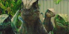 Raptors-Legends Never Die (Jurassic World) Jurassic Movies, Jurassic Park Series, Jurassic Park 1993, Blue Jurassic World, Jurassic World Fallen Kingdom, Michael Crichton, World Gif, Jurrassic Park, Science Fiction