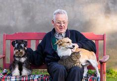 iIdoso com Alzheimer volta a falar perto de cachorrodoso e cachorro