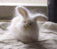 small stuffed rabbit