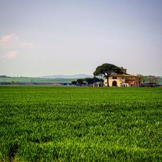 Country houses in Valdichiana were made to host many families working together in the fields of a tenant.