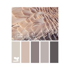 Вопрос-Ответ ❤ liked on Polyvore featuring colors, backgrounds, design seeds, color palettes, colours and filler