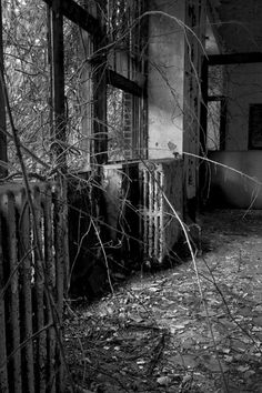 Another evocative image from North Brother Island, NYCity. The island buildings were abandoned in 1962 or 1963, and nature is taking over.