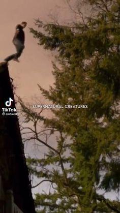 Vampire Diaries Songs, The Vampire Diaries Characters, Vampire Diaries Poster, Vampire Diaries Seasons, Vampire Diaries Wallpaper, Damon Salvatore Vampire Diaries, Ian Somerhalder Vampire Diaries, Vampire Diaries The Originals, Daimon Salvatore