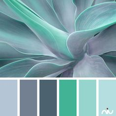 Turquoise Color Palette - Paint Inspiration- Paint Colors- Paint Palette- Color- Design Inspiration Más