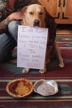 Dog shame things that make me smile ☺ животные Silly Dogs, Cute Funny Dogs, Cute Funny Animals, Cute Baby Animals, Funny Cats, Animals Dog, Dog Jokes, Funny Dog Memes, Animal Jokes