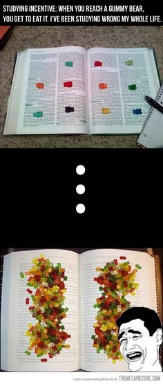 Studying for finals just got fun! LOL mine would be the second picture. Screw studying lets just eat gummy bears!