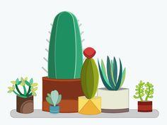 Home Desert Garden
