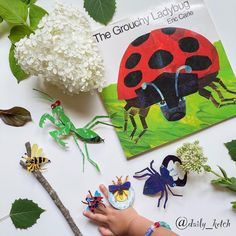 From Eric Carle, New York Times bestselling author of The Very Hungry Caterpillar and From Head to Toe, comes the classic story of one very grouchy ladybug. Eric Carle's bright artwork and signature style will charm both ardent fans and new readers alike. 📸 @daily_ketch National Book Store, Grouchy Ladybug, New Readers, Very Hungry Caterpillar, Eric Carle, Picture Books, Signature Style, Bestselling Author, Cool Pictures
