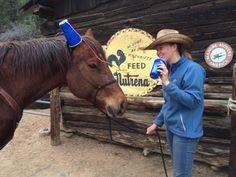 Explore Ranches — Colorado Dude Ranch Association - Dude Ranches in Colorado
