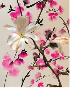 Plum Blossoms by Sisters Gulassa & Magnolia