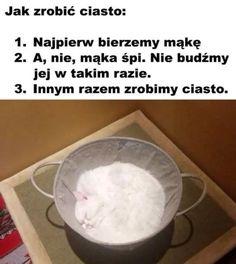 Funny Lyrics, Weekend Humor, Funny Mems, Nyan Cat, Wtf Funny, Yandere, Laughter, Haha, Wattpad