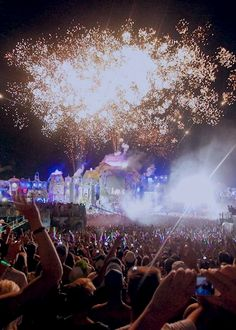 trippylightsandravemusic:   Tomorrowland 2013 | Source | More   GIRLS  PARTY  check out my instagram: maulix