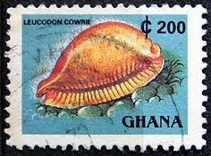 Ghana.  LANDMARK & SEASHELLS.  LEUCODON COWRIE.  Scott 1357E A243a, Issued 1991 Dec  12, Litho., Perf. 13 3/4 x 13 1/2, 200. /ldb.