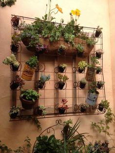 Old bed spring planter