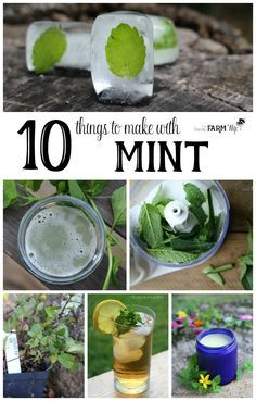 10 Things to Make With Mint - Mint is an easy to grow herb that cools and relieves pain. It can help ease stomachache, indigestion, headache, nausea and sore muscles. If you've ever grown mint in your garden, you're probably well aware of just how rapidly it spreads! Today, I'm sharing ten ways that you can use up an abundance of mint to make things that are both fun and practical. While peppermint and spearmint are most commonly used, if you have other types of mint such as orange…