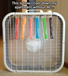 How I Cool Down My Apartment Without A/C - NoWayGirl